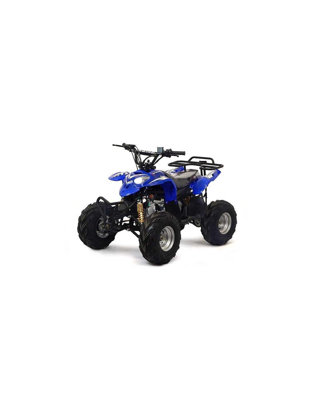 quad polaris 110